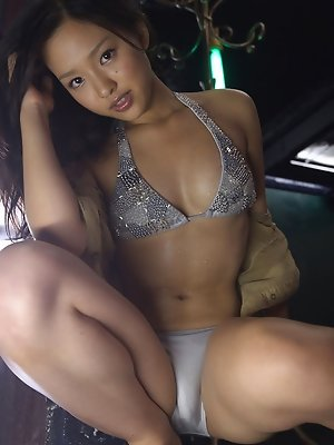 Shizuka Asian honey is a like a cat that demands to be spoiled